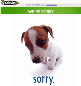 Godaddy.com says sorry to customers